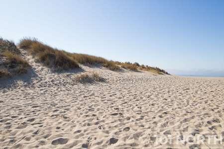 Beach 12-123.jpg