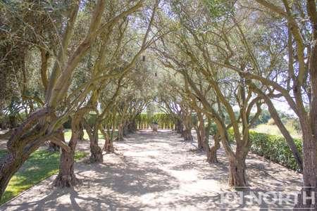 Ranch-Farm 06-60.jpg