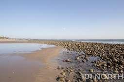 Beach 20 (127 of 38).jpg