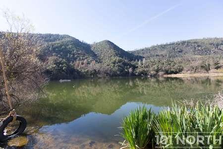 Pond 03-14.jpg