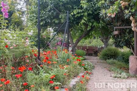 Garden 05-18.jpg