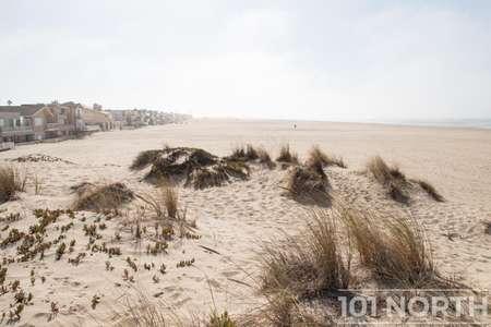 Beach 13-103.jpg