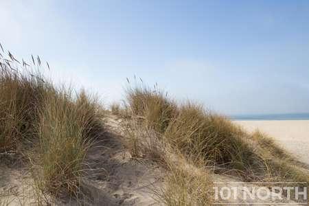 Beach 13-102.jpg