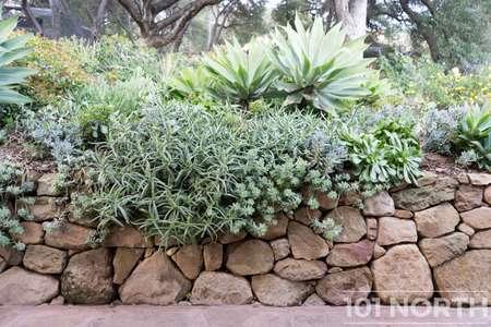 Garden 03-226.jpg