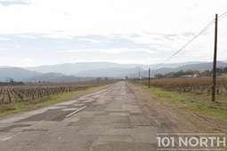Road 01-3.jpg