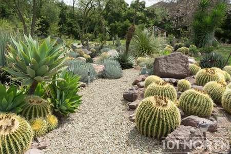 Garden 03-112.jpg
