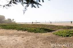 Beach 11-4.jpg