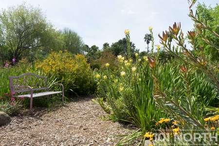 Garden 03-115.jpg