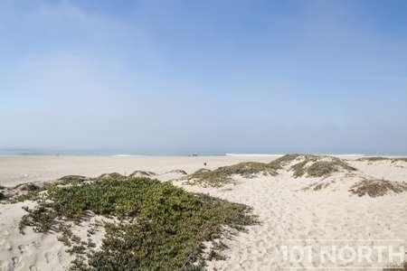 Beach 13-131.jpg