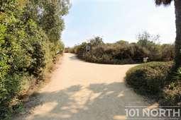 Beach 10-2.jpg