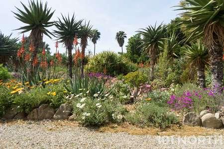 Garden 03-114.jpg