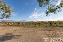 Winery 13-14.jpg