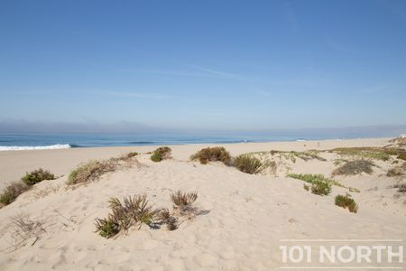 Beach 12-146.jpg