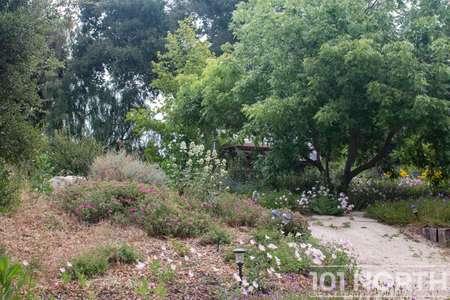 Garden 05-35.jpg