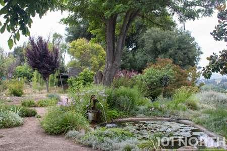 Garden 05-22.jpg