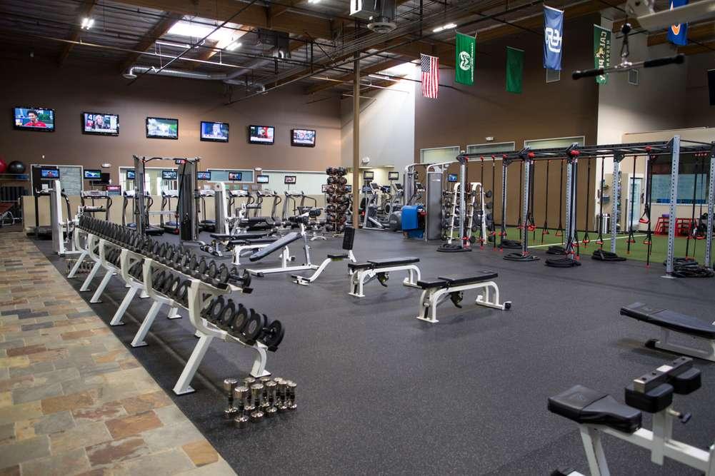 Gym 01 cover .jpg