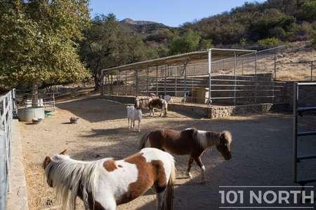 Ranch 15-04.jpg