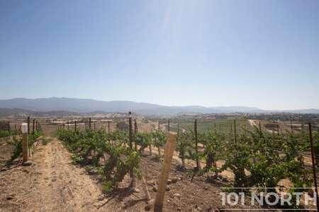 Winery 11-12.jpg