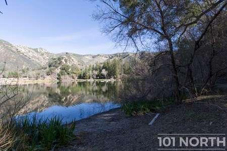 Pond 03-43.jpg