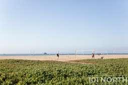 Beach 11-5.jpg