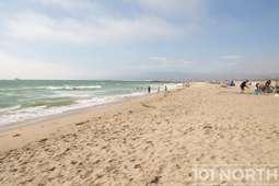 Beach 19-154.jpg