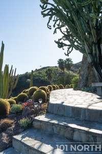 Garden 03-312.jpg