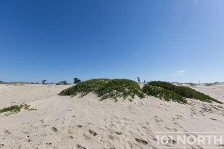 Beach 16-44.jpg