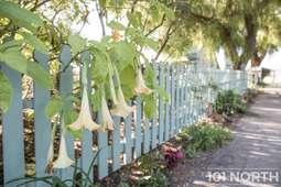Garden 01_49.jpg