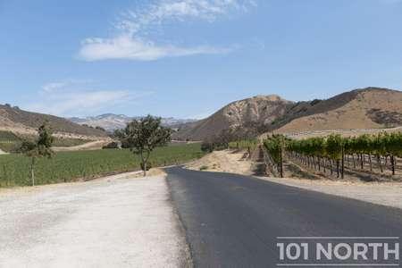 Winery 07-108.jpg