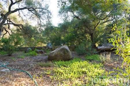 Garden 03-233.jpg