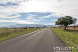 Road 03-4.jpg