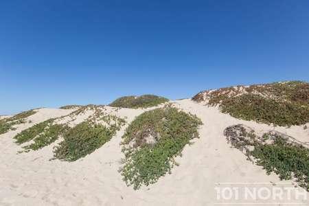 Beach 16-45.jpg