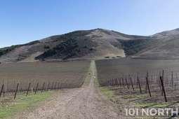 Winery 20-50.jpg