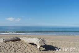 Beach 02-119.jpg