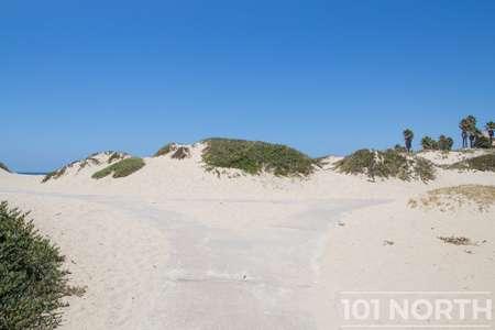 Beach 13-156.jpg