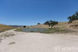 Pond 02-53.jpg
