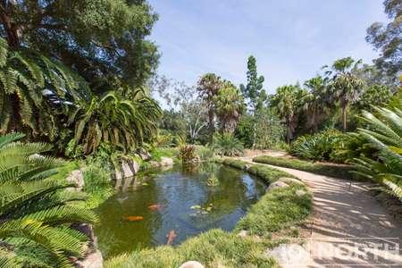 Garden 02-53.jpg