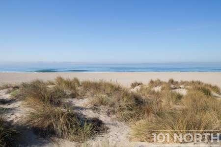 Beach 12-110.jpg