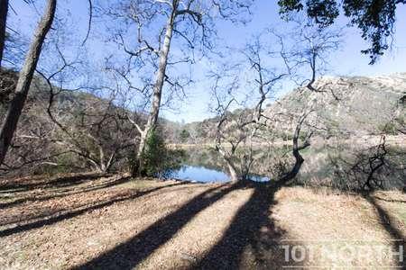 Pond 03-48.jpg