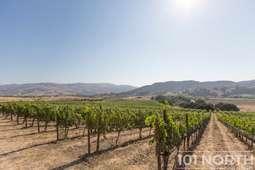 Winery 19-21.jpg