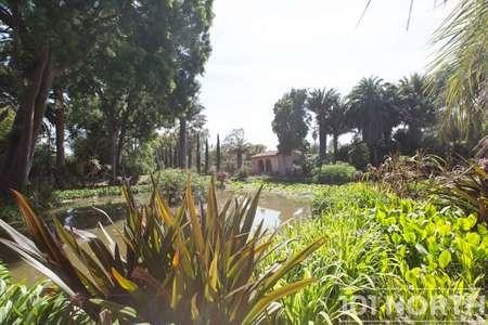 Garden 02-11.jpg
