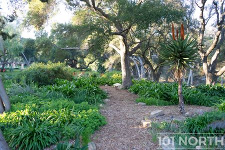 Garden 03-131.jpg