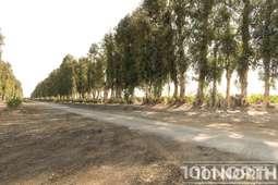 Road 16-301-2.jpg