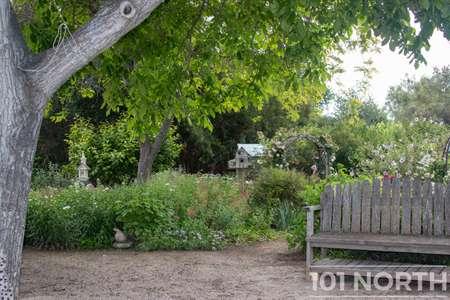 Garden 05-23.jpg