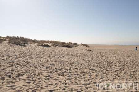 Beach 12-103.jpg