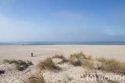 Beach 13-106.jpg