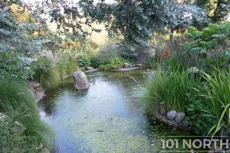 Garden 03-236.jpg
