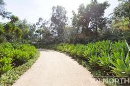 Garden 02-55.jpg