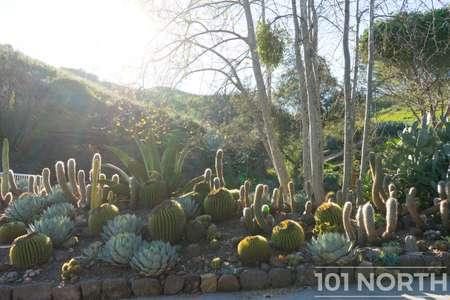 Garden 03-340.jpg