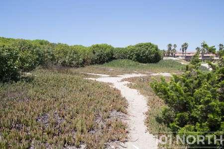 Beach 13-155.jpg